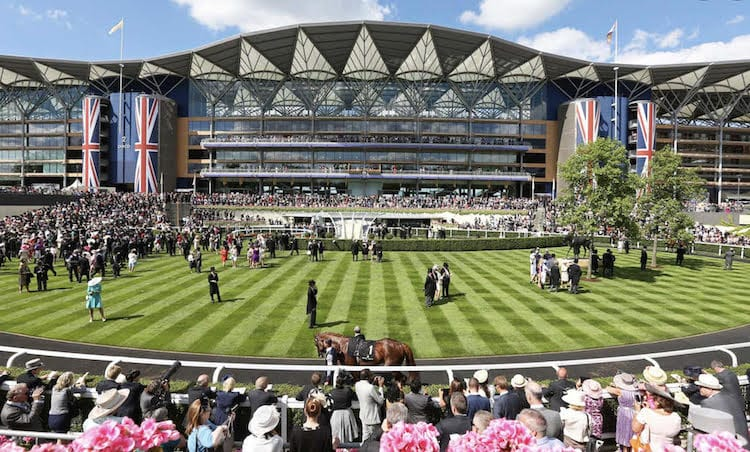 ascot-event-chauffeuring